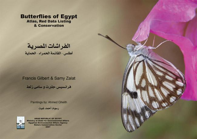 2008 Butterflies-1
