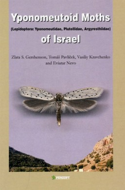 Yponomeutoid moths of Israel