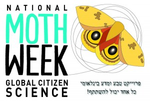 National Moth Week 2014